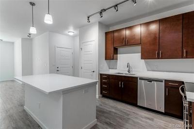 Parker Condo/Townhouse Under Contract: 17353 Wilde Avenue #106 B