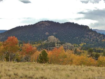 Como CO Residential Lots & Land Active: $18,900