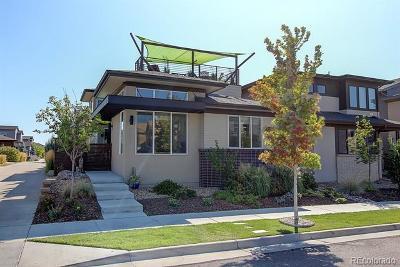 Denver Single Family Home Active: 6652 Larsh Drive
