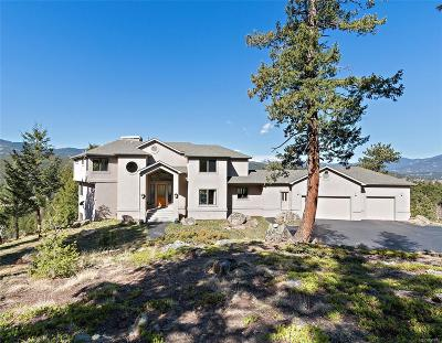 Evergreen Single Family Home Active: 7260 South Frog Hollow Lane