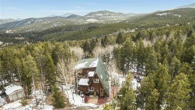 Conifer, Evergreen Single Family Home Under Contract: 104 Sioux Trail
