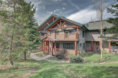 Steamboat Springs CO Condo/Townhouse Active: $689,000