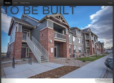 Longmont Condo/Townhouse Active: 804 Summer Hawk Drive #202
