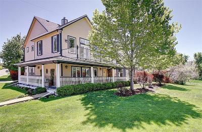 Denver Single Family Home Under Contract: 1500 South Race Street