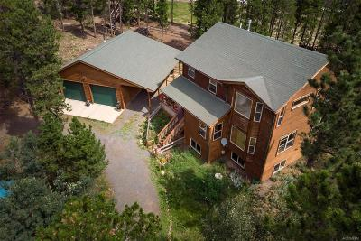 Nederland Single Family Home Active: 10 Shoshoni Way
