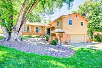 Single Family Home Active: 6747 Vivian Street