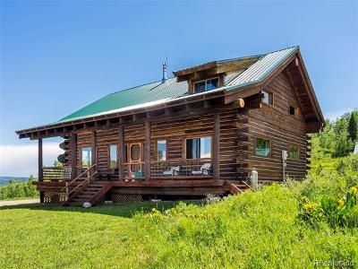 Routt County Single Family Home Active: 26895 Beaver Canyon Drive