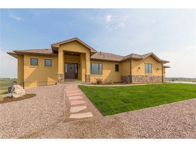 Colorado Springs Single Family Home Active: 17115 Papago Way