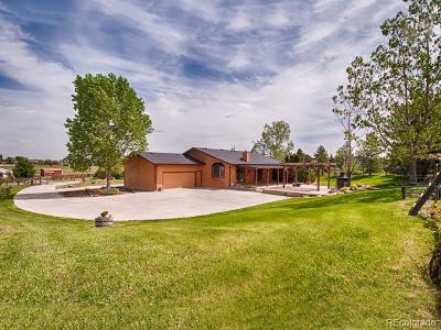 Berthoud Single Family Home Active: 5409 Beverly Drive