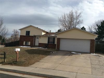 Aurora CO Single Family Home Active: $307,000