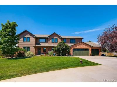 Longmont Single Family Home Active: 7557 Rodeo Drive