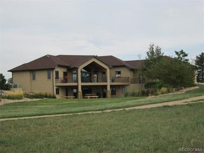 Fort Lupton Single Family Home Active: 14211 County Road 22