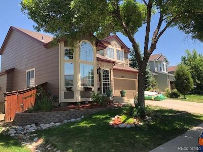Highlands Ranch Single Family Home Under Contract: 9504 High Cliffe Street