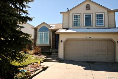Castle Rock Single Family Home Active: 5705 East Wagonwheel Trail
