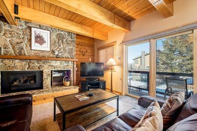 Steamboat Springs Condo/Townhouse Active: 2650 Medicine Springs Drive #4