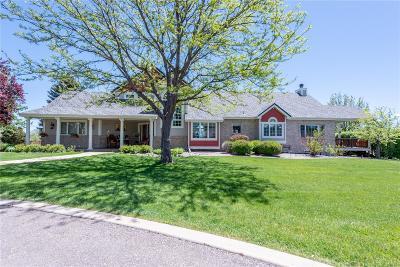 Littleton Single Family Home Active: 5100 South Van Gordon Street