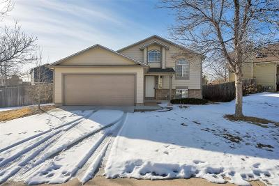Castle Rock Single Family Home Under Contract: 5700 East Melody Way