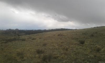 Como CO Residential Lots & Land Active: $11,000