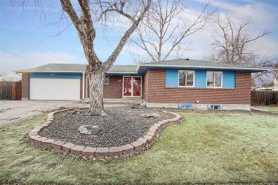 Northglenn Single Family Home Under Contract: 10675 Tancred Street