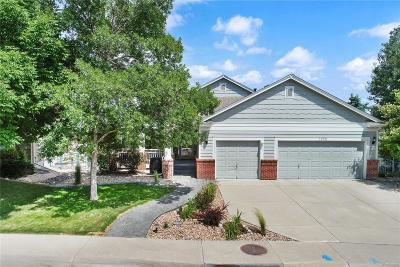Arvada Single Family Home Under Contract: 7058 Torrey Street
