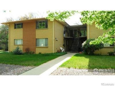 Boulder County Condo/Townhouse Active: 713 Collyer Street