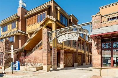 Steamboat Springs Condo/Townhouse Active: 1110 Yampa Street #R1