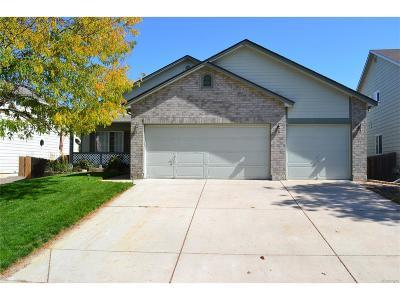 Henderson Single Family Home Active: 11368 Newark Street