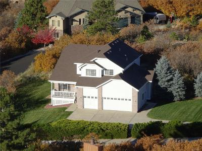 Castle Rock Single Family Home Under Contract: 517 Valley Drive