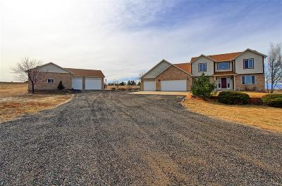 Brighton Single Family Home Active: 15074 Overland Trail