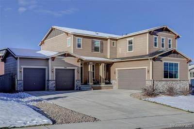 Castle Rock Single Family Home Active: 3981 Manorbrier Circle