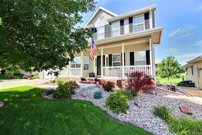 Single Family Home Active: 113 56 Avenue