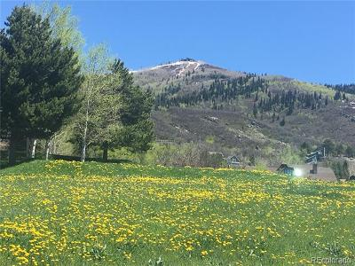 Steamboat Springs Residential Lots & Land Active: 2967 Alpenglow Way