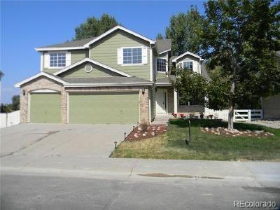 Arapahoe County Single Family Home Under Contract: 6395 South Jericho Way