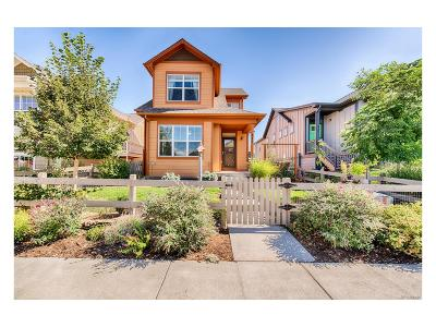Lafayette Single Family Home Under Contract: 513 Hoyt Lane