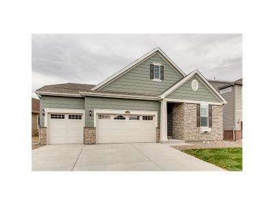 Longmont Single Family Home Active: 2298 Spotswood Street