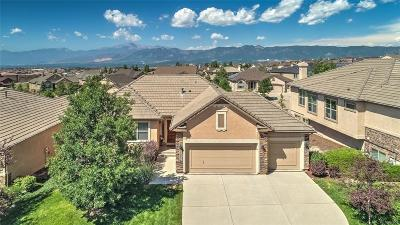 Flying Horse Single Family Home Under Contract: 13834 Firefall Court