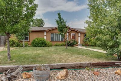 Hudson Single Family Home Under Contract: 155 Dahlia Street