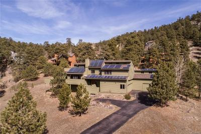 Golden Single Family Home Active: 25707 Foothills Drive N