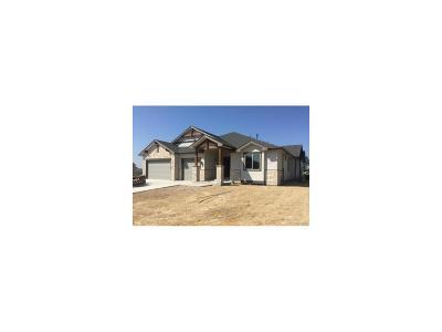 Johnstown Single Family Home Active: 4372 Lemon Grass Drive