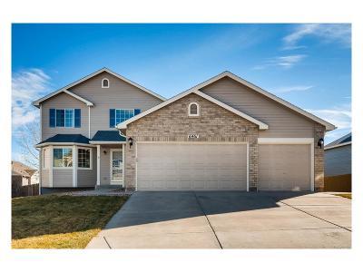 Colorado Springs Single Family Home Active: 6461 Borough Drive