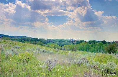 Steamboat Springs Residential Lots & Land Active: 33860 Beaver Pl.