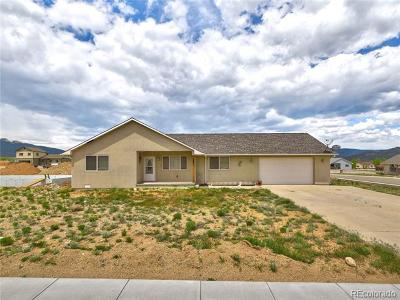 Buena Vista Single Family Home Active: 123 Red Tail Boulevard