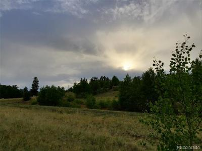 Park County Residential Lots & Land Active: 1290 Breton Circle