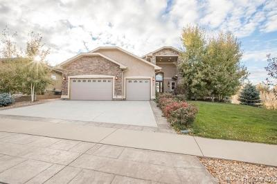 Greeley Single Family Home Active: 609 Riverside Court