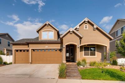 Denver Single Family Home Active: 5342 Kirk Street