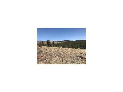 Jefferson County Residential Lots & Land Active: 15699 Ouray Road