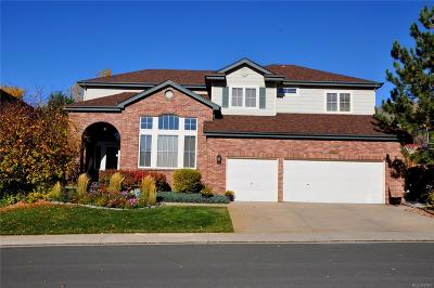 Littleton Single Family Home Active: 6439 Serengeti Circle
