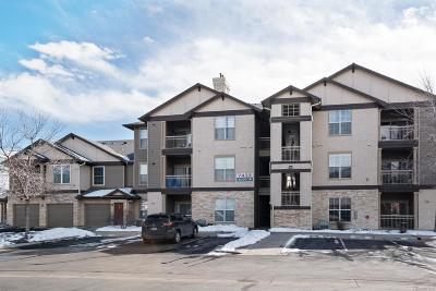 Littleton Condo/Townhouse Under Contract: 7432 South Quail Circle #1814