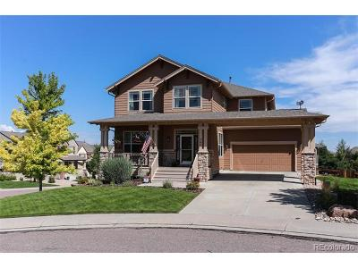 Castle Pines Single Family Home Active: 744 Briar Haven Drive