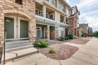 Castle Rock Condo/Townhouse Active: 452 Black Feather Loop #617